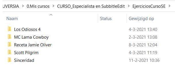 error no hay software_Carpeta EjerciciosCursoES